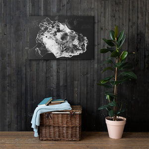 Black Ice Canvas Print
