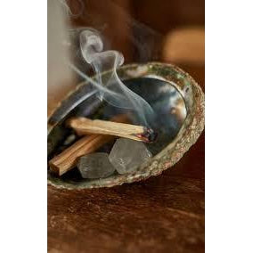 Premium Kiln-Dried Palo Santo (Bundle of 3) - The Necessities Company