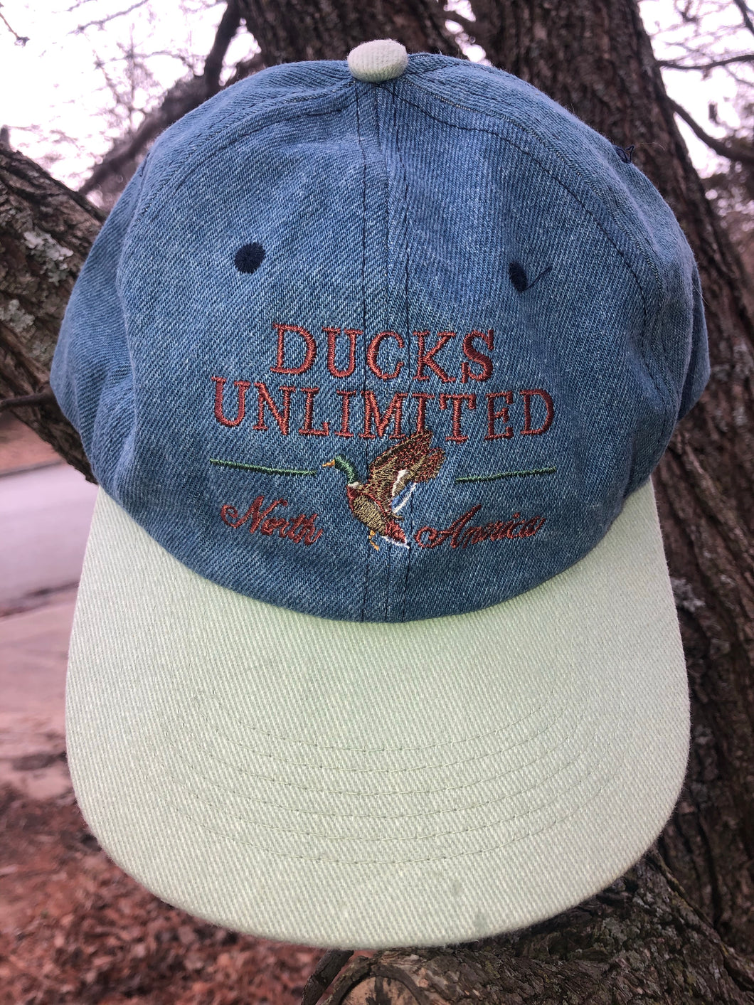 Ducks Unlimited North America Hat