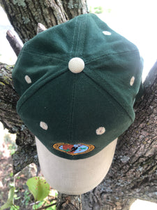 Arkansas Natural Heritage Commission Cap