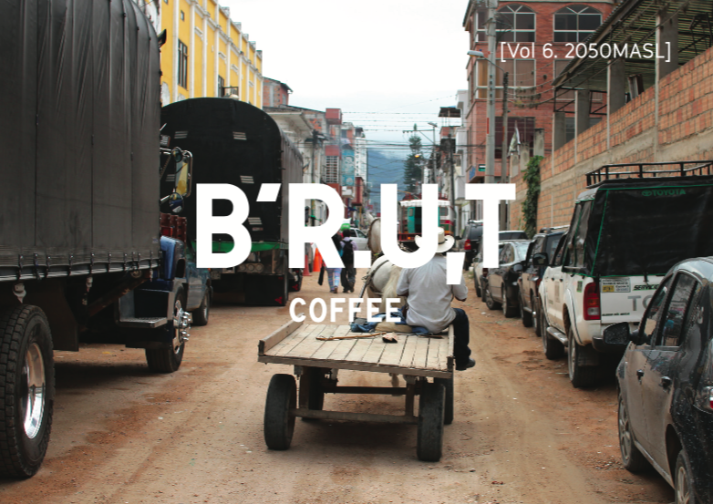 BRUT coffee vol.6 Colombia Carlos Estrella Geisha Washed