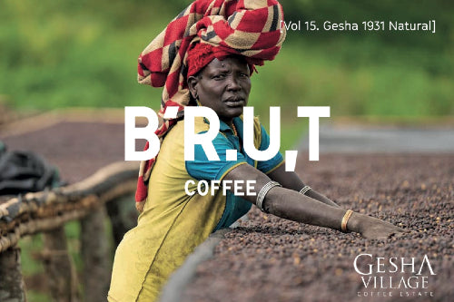 BRUT Coffee vol.15 Ethiopia Gesha VIllage Surma Rarities Lot 20/093 Natural