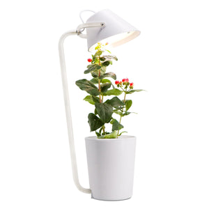 Smart Herb Garden with LED Desk Lamp