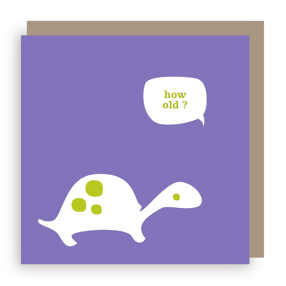 Birthday card | tortoise