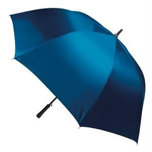 Liverpool Collegiate RUFC Umbrella