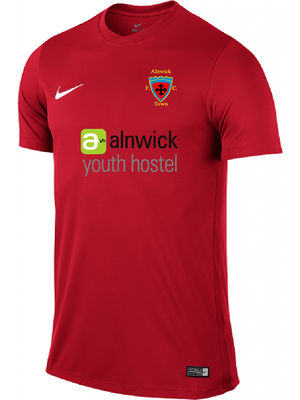 Alnwick AFC Nike Training Tee shirt Adult