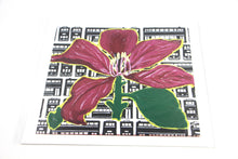 Load image into Gallery viewer, Bauhinia Flower - Art Print