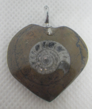 Load image into Gallery viewer, Fossil Ammonite Necklace Pendant