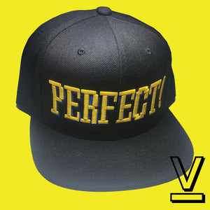 PERFECT HAT - SNAP BACK