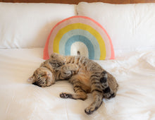 Load image into Gallery viewer, Over-the-Rainbow Pillow
