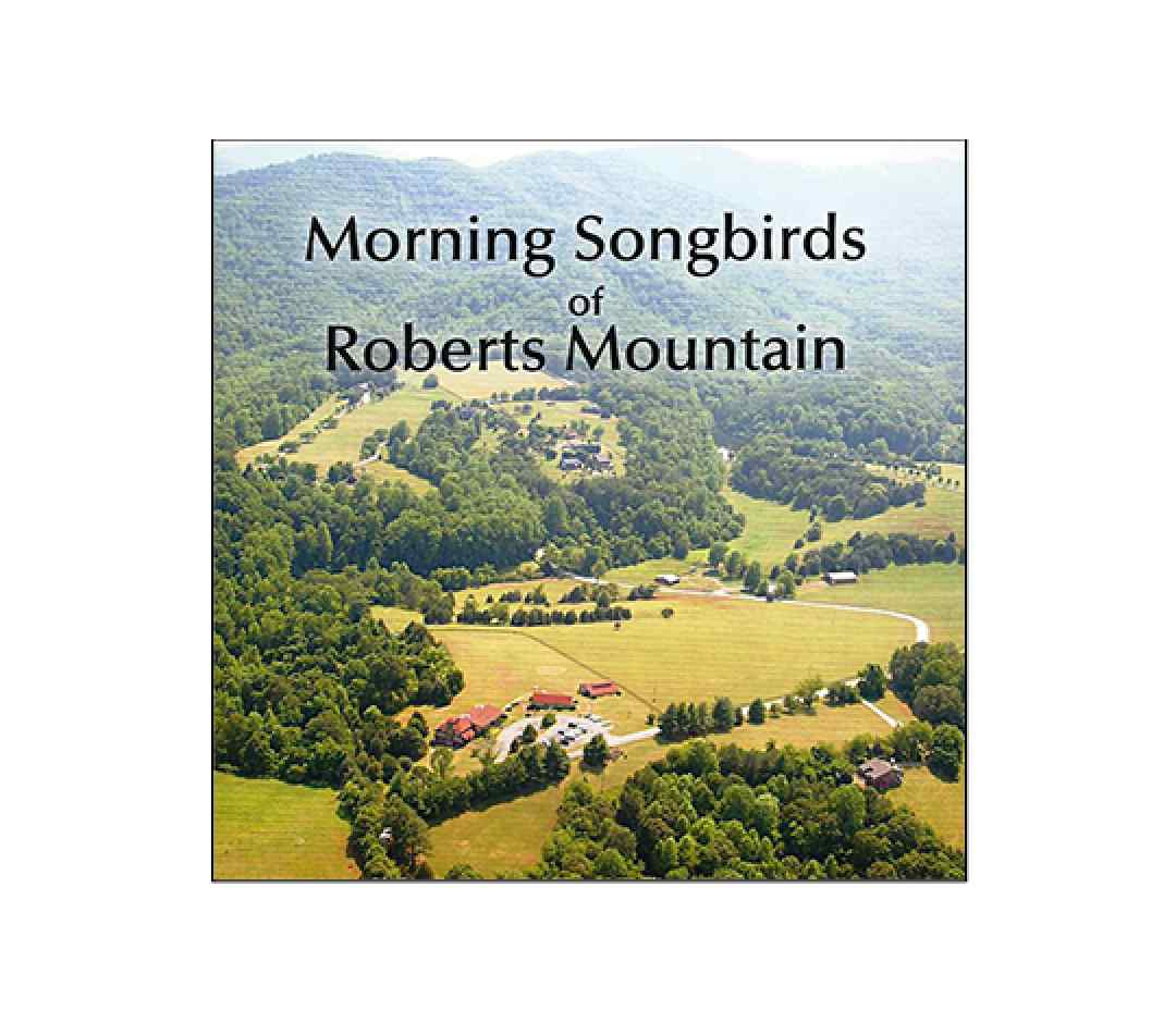 Morning Songbirds of Roberts Mountain