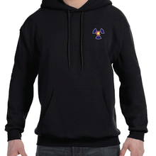 Load image into Gallery viewer, Colorado Radiology Hoodie