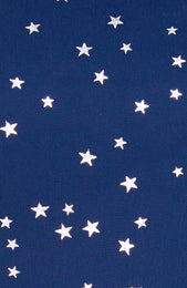 Night Shimmers Mini Dress Navy Star