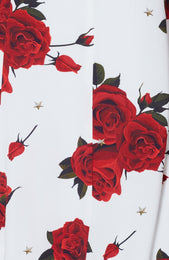 Something About You Dress Scarlet Rose White