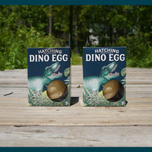 Load image into Gallery viewer, Hatching Dino Egg:  2 Pack.  Yes - this is the price for two eggs.