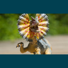 Load image into Gallery viewer, Max Window Pack with Dilophosaurus