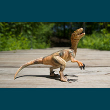 Load image into Gallery viewer, Max Window Pack with Velociraptor