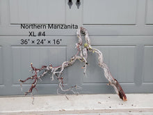Load image into Gallery viewer, Northern Manzanita Wood XL#4 (Contact me before purchasing)