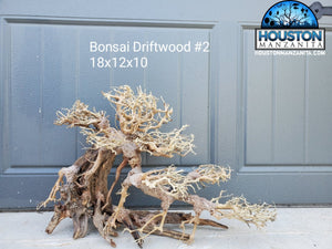 "Bonsai Driftwood 18"" #02"