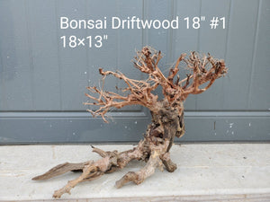 "Bonsai Driftwood 18"" #03"