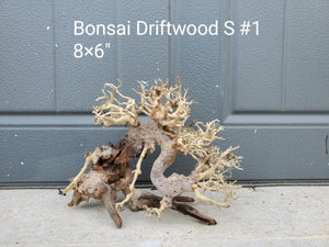 Bonsai Driftwood Small #1