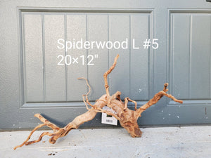 Spiderwood L #05