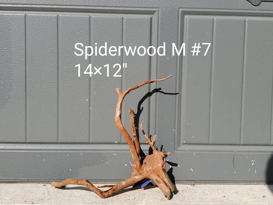 Spiderwood M #07