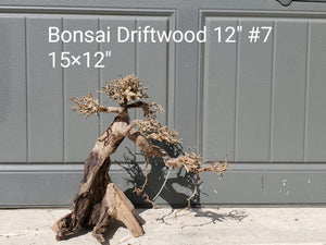"Bonsai Driftwood 12"" #07"
