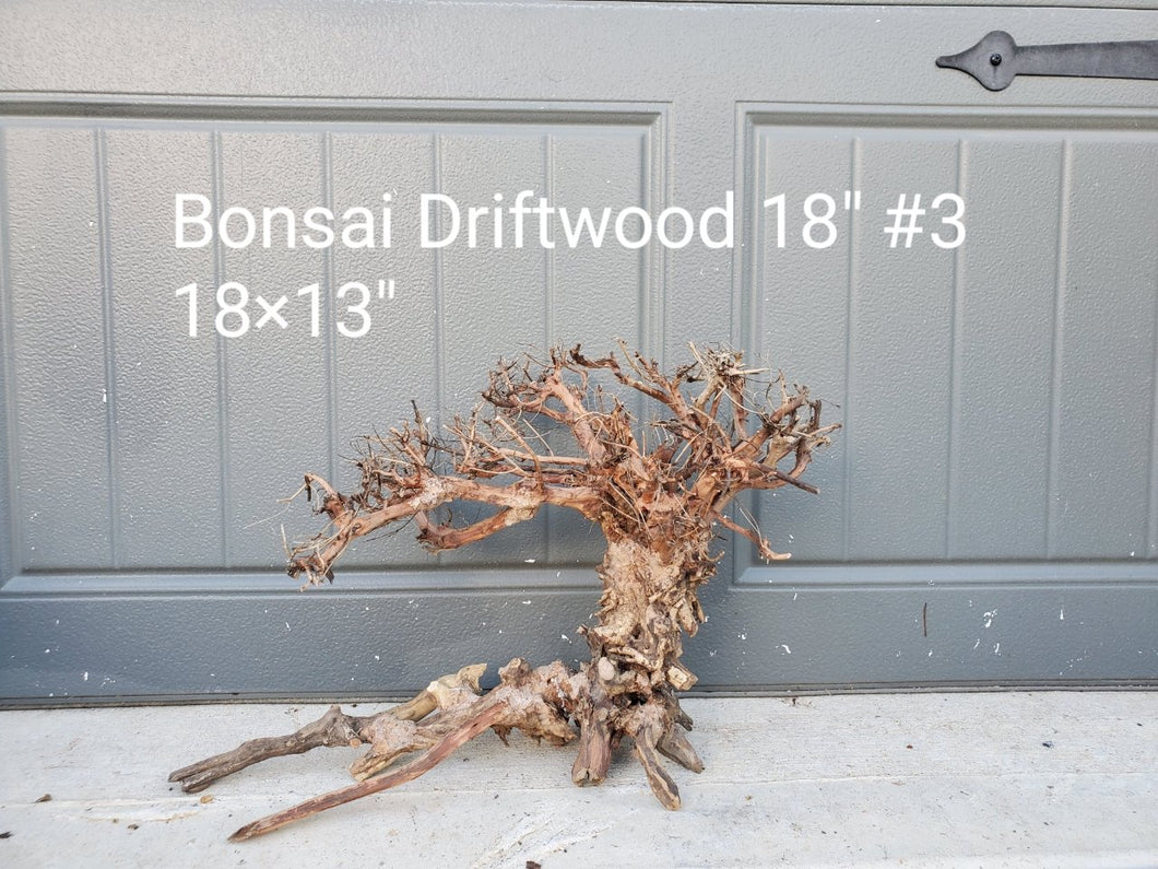 Discounted Bonsai Driftwood 18