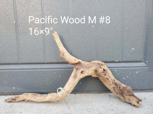 Pacific Wood M #08
