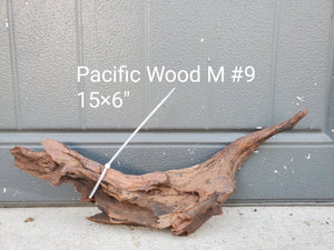 Pacific Wood M #09