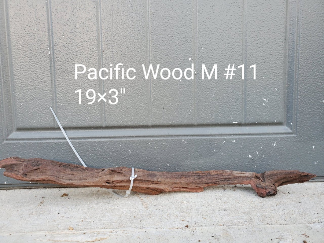 Pacific Wood M #11