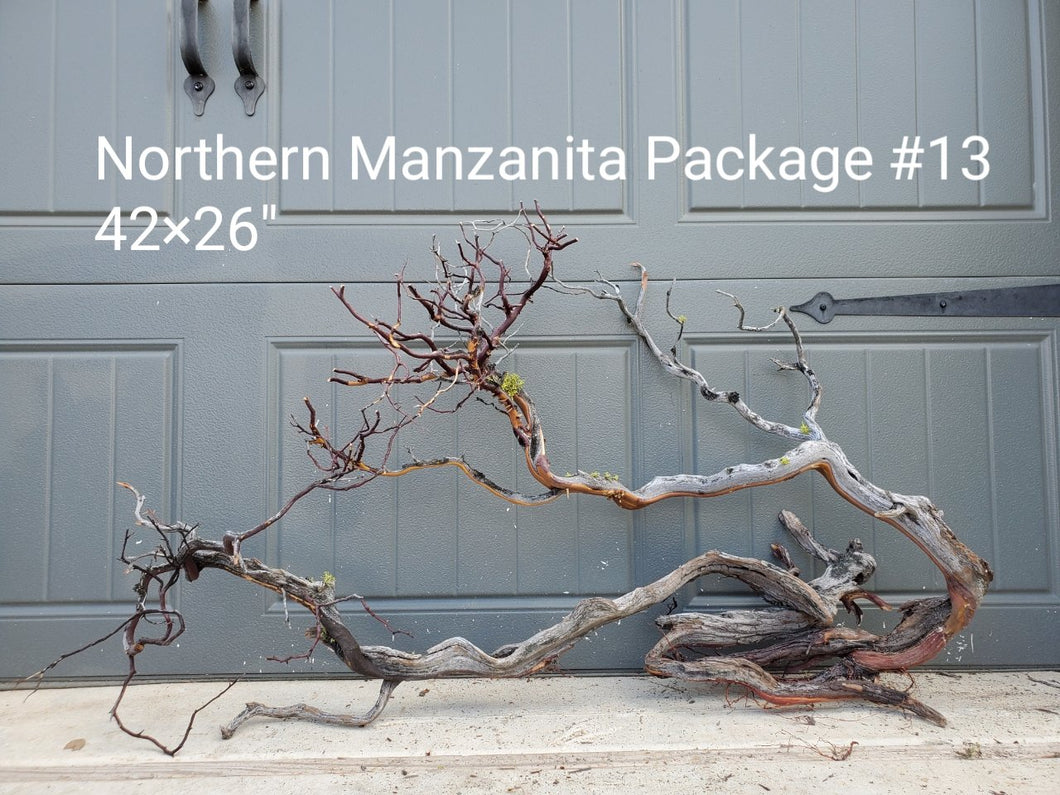 Northern Manzanita Wood Package 13