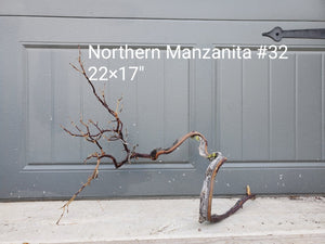 Northern Manzanita Wood #32