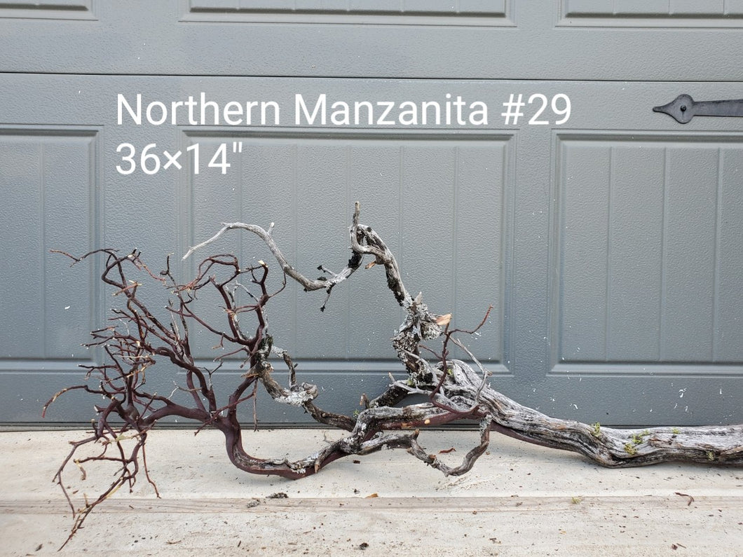 Northern Manzanita Wood #29