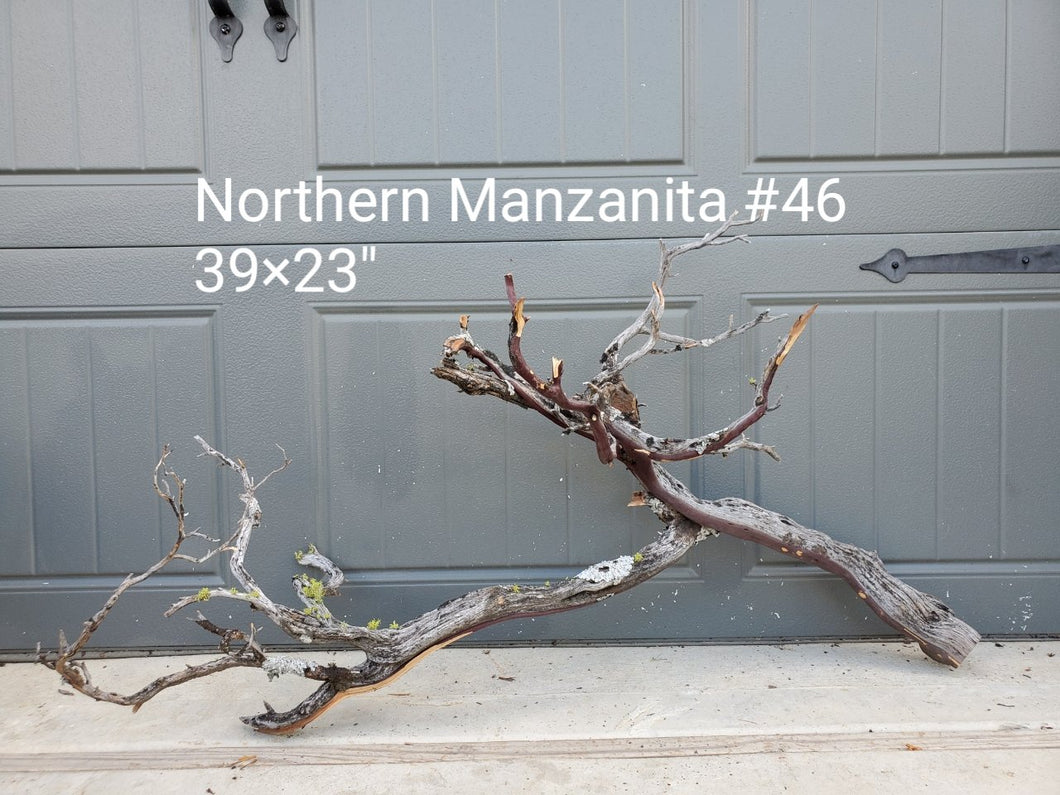 Northern Manzanita Wood #46