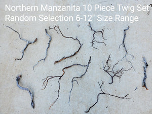 Northern Manzanita Wood Twig Set of 10 Random Selection