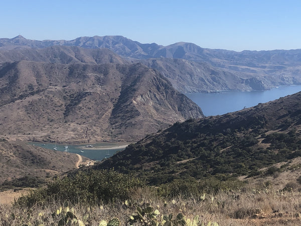 Trans Catalina Trail View