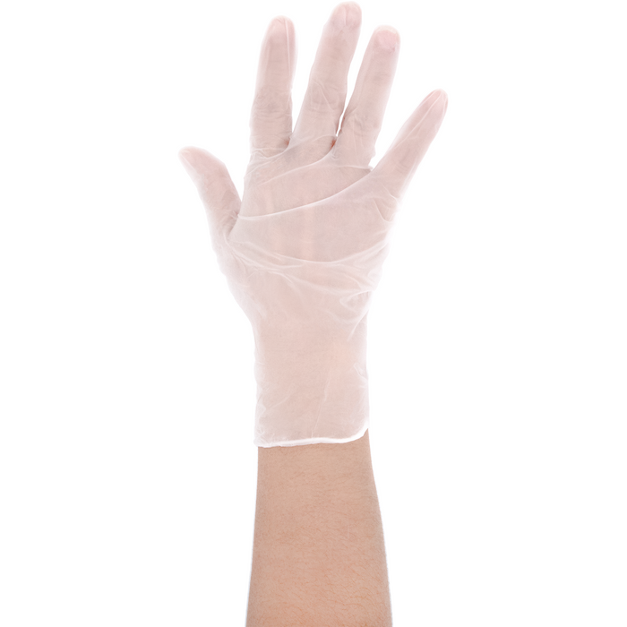 Emerald Powder-Free Vinyl Gloves - White - 100ct