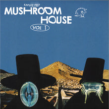 Kapote - Mushroom House Vol 1 LP TOYT115 front cover