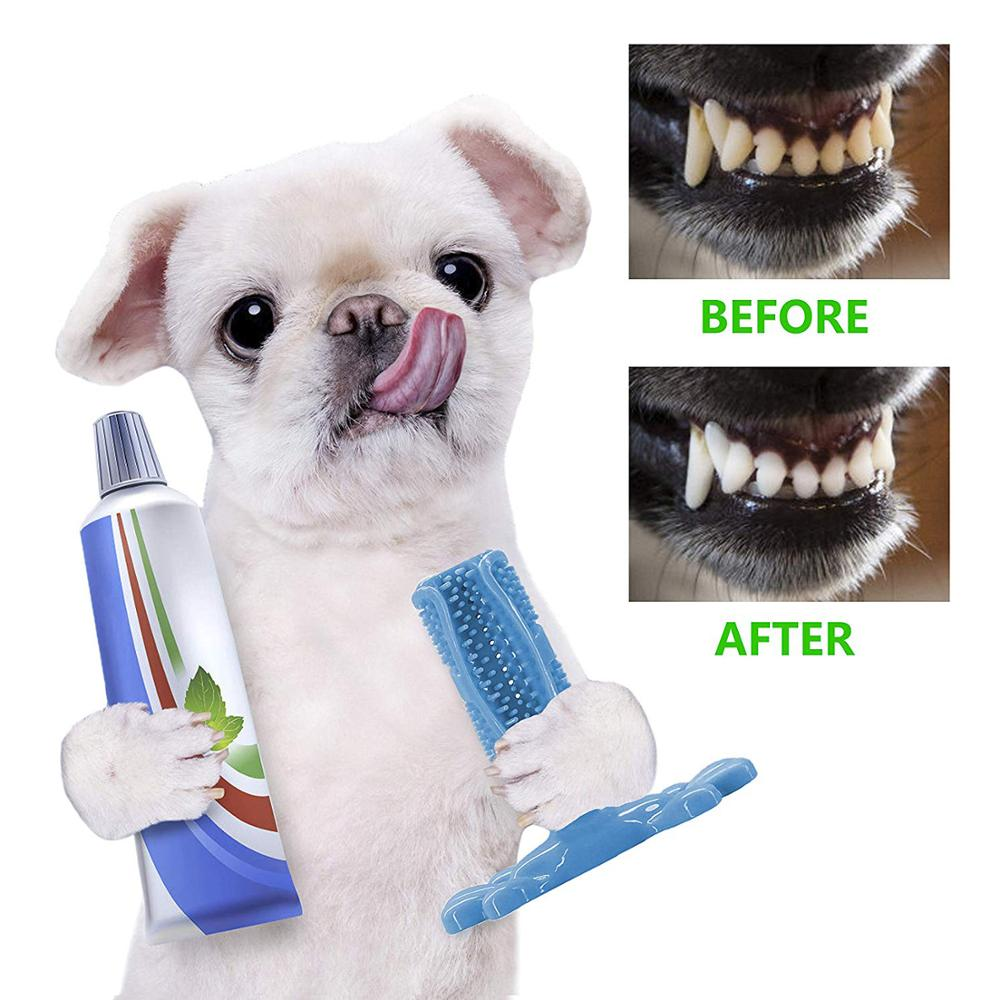 Best Most Effective Dog Toothbrush