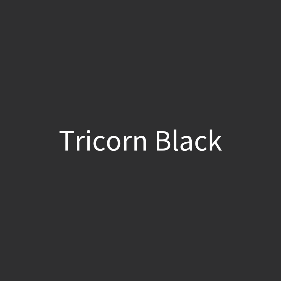 Tricorn Black Door Paint (1 Quart)
