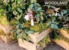 woodland wedding decorations for sale