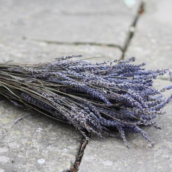 bunch of dried lavender wedding decorations
