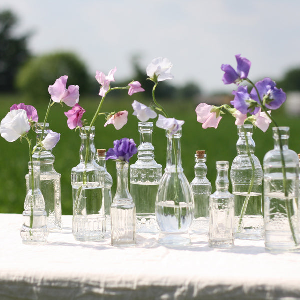 Set Of 6 Glass Bottle Vases With Cork Stoppers The