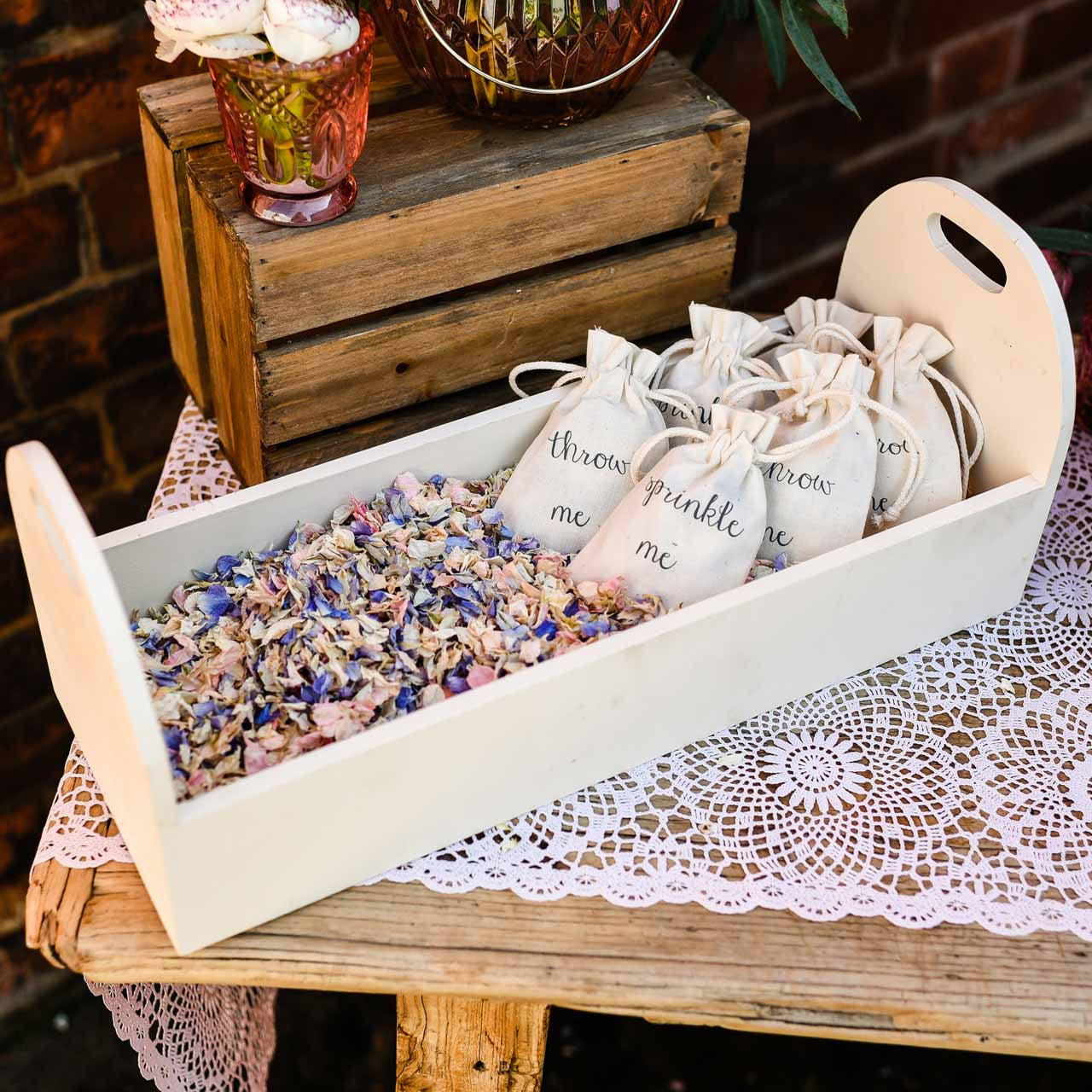 Real Fairytale Weddings Silver Spring Md: Pink Purple Summer Mix Biodegradable Delphinium Confetti