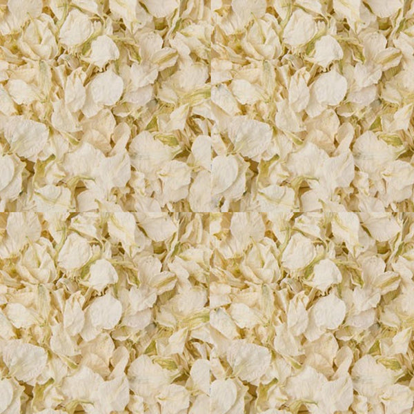 ivory wedding petal confetti biodegradable