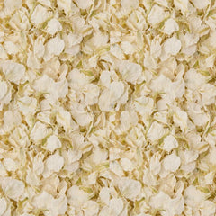 Ivory Wedding Confetti Natural Delphinium Petals