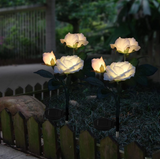 Solar Powered Rose Light - Waterproof and Wire-free