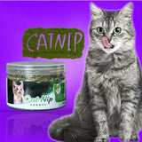 100% Natural Organic Catnip